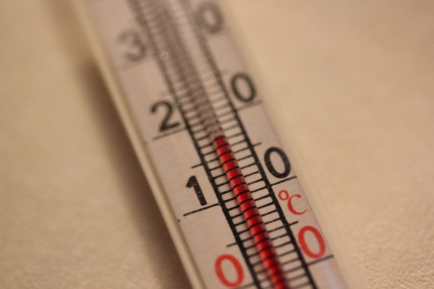 Temperaturmessung zur Überwachung der Gärung